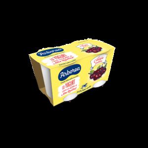 yogurt intero ciliegia frullata